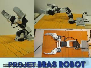 PROJET BRAS ROBOT