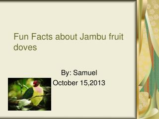 Fun Facts about Jambu fruit doves