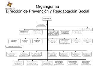 Organigrama Dirección de Prevención y Readaptación Social
