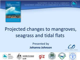 Projected changes to mangroves, seagrass and tidal flats