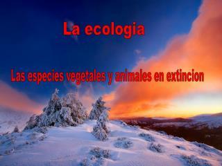 Las especies vegetales y animales en extincion