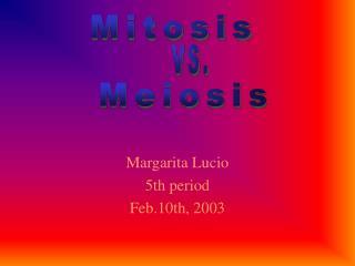 Margarita Lucio 5th period Feb.10th, 2003