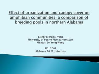 Esther Morales-Vega University of Puerto Rico at Humacao Mentor: Dr Yong Wang REU 2009