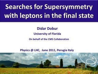 Searches for  Supersymmetry  with leptons in the final state