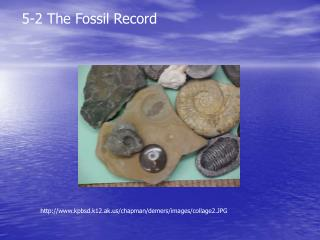 5-2 The Fossil Record