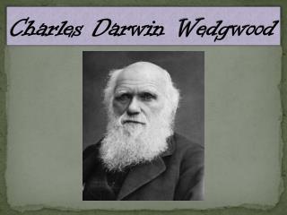 Charles Darwin  Wedgwood
