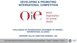 DEVELOPING & PROMOTING  INTERNATIONAL COMPETITION