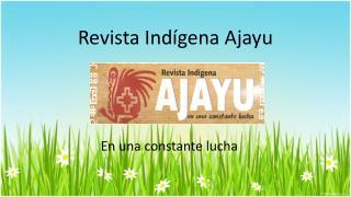Revista Ind�gena Ajayu