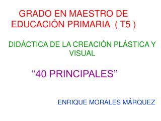 GRADO EN MAESTRO DE EDUCACIÓN PRIMARIA  ( T5 )