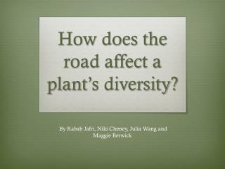 How does the road affect a plant's diversity?