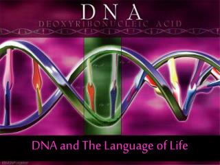 DNA and The Language of Life
