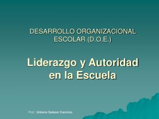 DESARROLLO ORGANIZACIONAL ESCOLAR (D.O.E.) Liderazgo y Autoridad en la Escuela