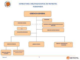 AUDITORIA  INTERNA REPRESENTANTE DE LA ALTA DIRECCI�N