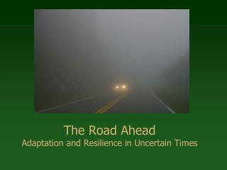 The Road Ahead Adaptation and Resilience in Uncertain Times