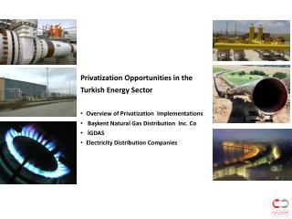 Privatization Opportunities in the Turkish Energy Sector