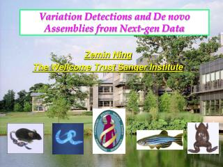 Variation Detections and De novo Assemblies from Next-gen Data