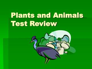 Plants and Animals Test Review