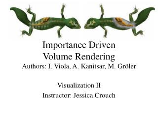 Importance Driven  Volume Rendering Authors: I. Viola, A. Kanitsar, M. Gr ö ler