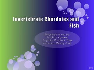 Invertebrate Chordates and Fish