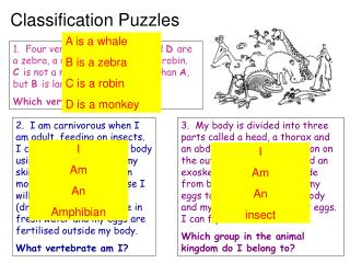 Classification Puzzles