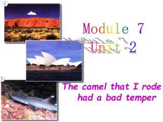 Module 7 Unit 2