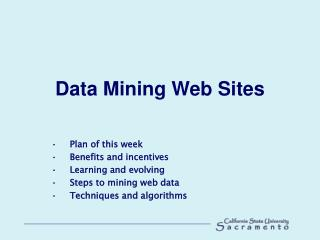 Data Mining Web Sites