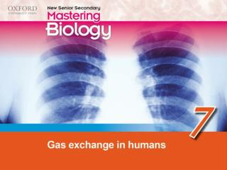 Think about… 7.1 The human breathing system 7.2 Gas exchange in the air sacs