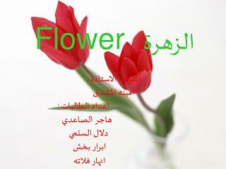 الزهرة     Flower