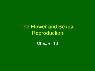 The Flower and Sexual Reproduction