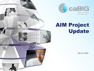 AIM Project Update
