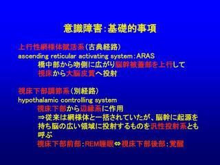 上行性網様体賦活系 (古典経路) ascending reticular activating system : ARAS     橋中部から吻側に広がり 脳幹被蓋部を上行 して