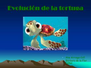 Evoluci n de la tortuga