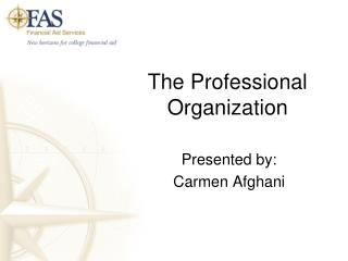The Professional Organization