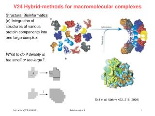 V24 Hybrid-methods for macromolecular complexes
