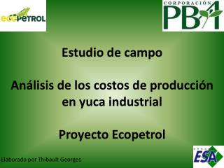 Estudio de campo Análisis de los costos de producción en yuca industrial Proyecto Ecopetrol