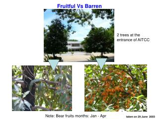 Fruitful Vs Barren