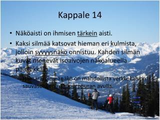 Kappale 14