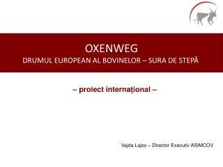 OXENWEG DRUMUL  EUROPEAN AL BOVINELOR – SURA DE STEPĂ