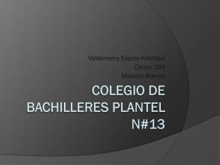 Colegio de bachilleres plantel n#13