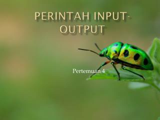 Perintah  Input- OutPut