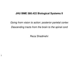 JHU BME 580.422 Biological Systems II Going from vision to action: posterior parietal cortex