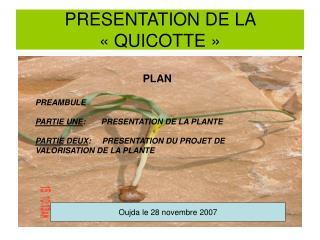 PRESENTATION DE LA  « QUICOTTE »