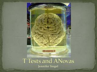 T Tests and  ANovas