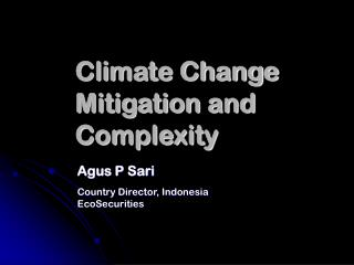 Climate Change Mitigation and Complexity