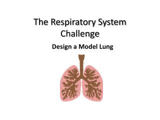 The Respiratory System Challenge