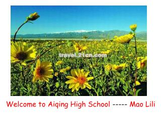 Welcome to Aiqing High School  -----  Mao Lili