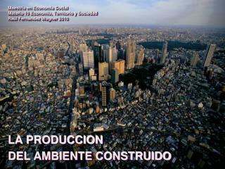 Maestría en Economía Social Materia 10 Economía, Territorio y Sociedad Raúl Fernández Wagner 2010