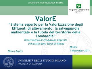 Milano 7 Novembre 2011