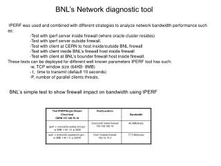 BNL's Network diagnostic tool