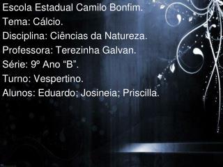 Escola Estadual Camilo Bonfim. Tema: Cálcio. Disciplina: Ciências da Natureza.